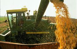 Safra de grãos 2015/2016 atingirá 209 milhões de toneladas