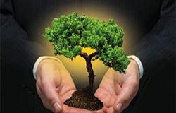 Energia renovável é uma das principais demandas da população para combater as mudanças climáticas