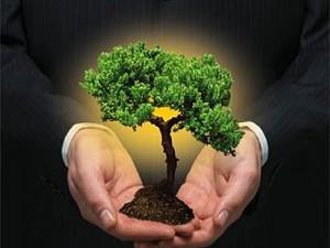 Consumo Consciente: Gestão de energia na produção para reduzir custos