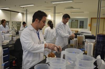Resultados de pesquisas em agroenergia serão divulgados na Embrapa
