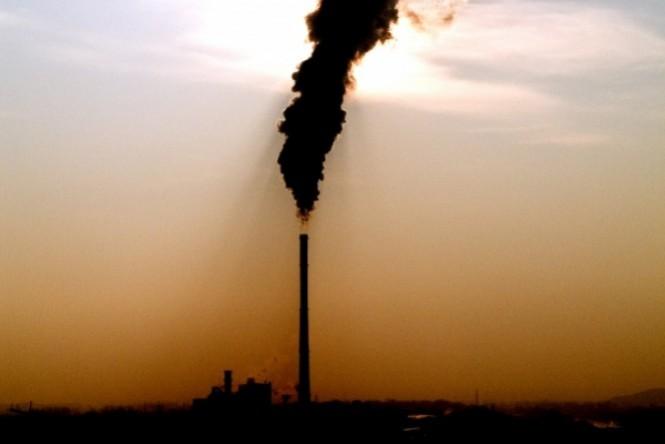 Indústria mundial da carne divulga posicionamento sobre compromisso com o clima na COP 21