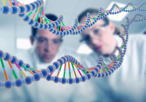 Brasil, Canadá e Estados Unidos unificam Sistema sobre recursos genéticos animais
