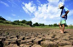 Seca no sul do Piauí causa perdas de 80% na soja e 70% no milho