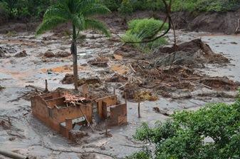 Produtores rurais têm prejuízo de R$ 23,2 milhões com rompimento de barragem em Mariana