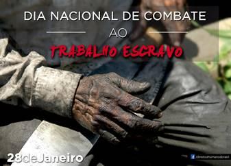Agricultura e pecuária correspondem a 15% do total de trabalho escravo no Brasil