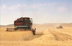 Plano ABC estadual é lançado para estimular a agricultura sustentável em São Paulo