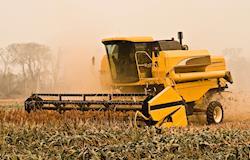 Em dez anos, safra brasileira de grãos deve chegar a 255,3 mi/t