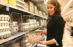 Preços dos ovos tiveram alta na última semana
