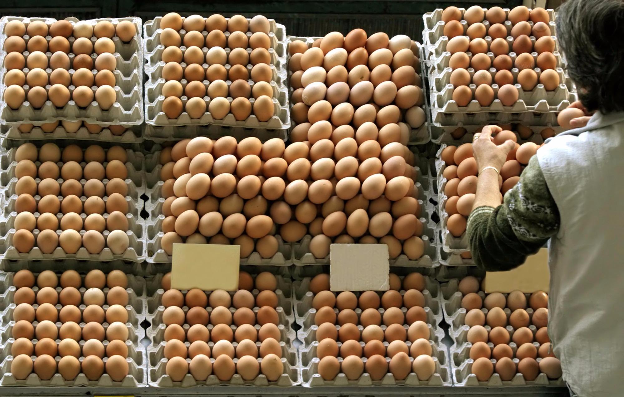 Mercado de ovos teve desvalorização na semana