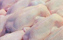 Exportações de carne de frango novamente superam 420 mil toneladas