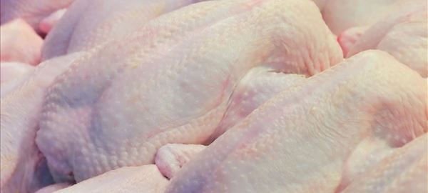 China suspende importação de frango de MS