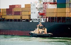 Exportação agrícola do PR é a maior da história no primeiro quadrimestre