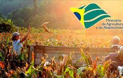 Ministério da Agricultura, Pecuária e Abastecimento participa da AveSui América Latina