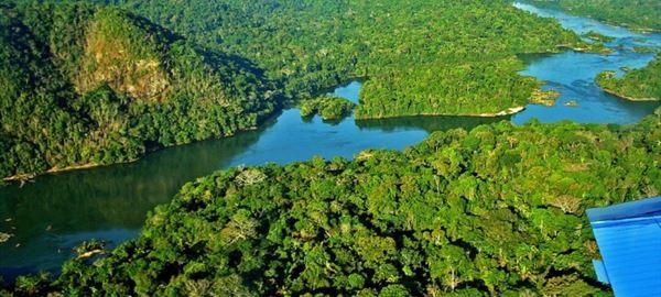 Consumo de madeira da Amazônia – por Ricardo Ernesto