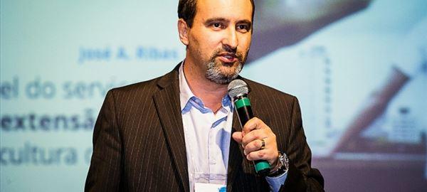 Setor avícola apoia nova norma para importação de material genético