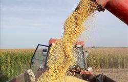 Governo faz remoção de 52,6 t de milho para evitar desabastecimento