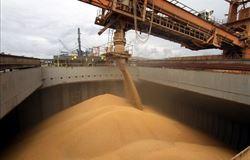 Avicultores e suinocultores capixabas fecham primeira importação de milho da Argentina