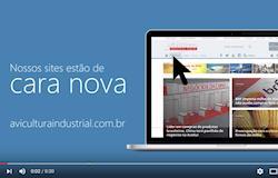Google Analytics: Site aviculturaindustrial.com.br supera a marca de 80 mil acessos/mês