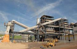 Biomassa florestal tem potencial para uma gama de bioprodutos