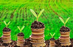 Produtores rurais já contrataram R$ 33,4 bi de crédito para a safra 2016/2017