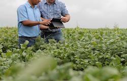 Cooperativas dos Campos Gerais promovem pós-graduação em agronegócio
