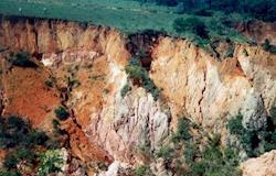 Estudo revela que 30% dos solos do mundo estão degradados