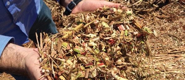 Meio Ambiente aprova normas para uso de biogás