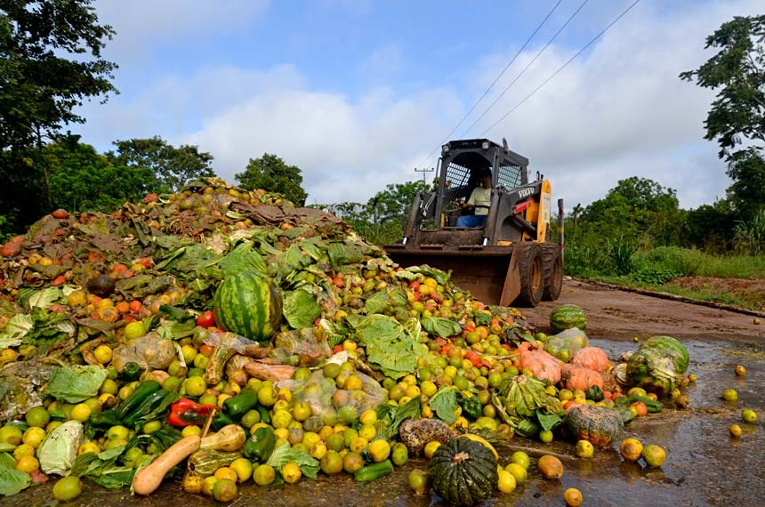 Comissão de Agricultura trabalha lei para reduzir desperdício de alimentos