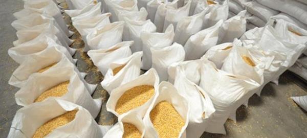 Mapa autoriza aumento do limite para venda de milho balcão