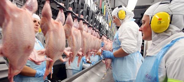 Paraná embarcou 1,07 mi/t de carne de  frango até agosto