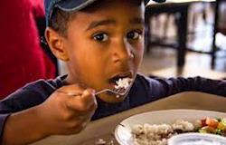 Dieta da população brasileira está cada vez mais padronizada