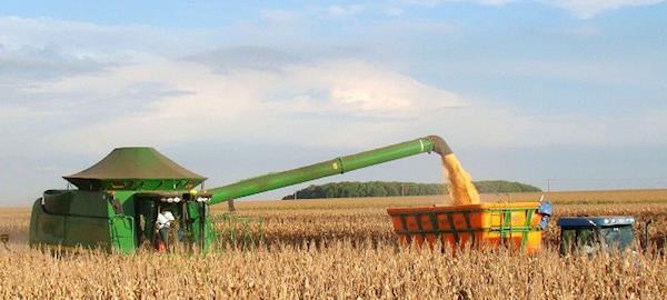 Safra 2016/17 de grãos deve chegar a 213 milhões de toneladas