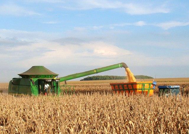 Safra de grãos deve alcançar recorde histórico de 219 milhões de t
