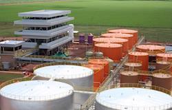 Uso do biodiesel pode gerar economia anual de R$ 48 milhões a produtores rurais, apontam especialistas