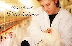 Médicos-veterinários estão presentes em todos os momentos da vida