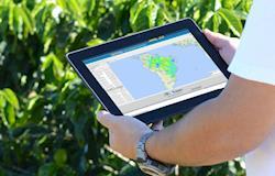 Cientistas criam sistema de monitoramento climático para a  agricultura