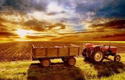 Declaração de Imposto Territorial Rural deve ser feita até amanhã