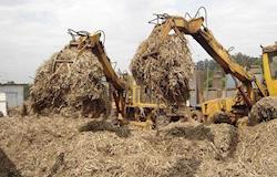 Biomassa da cana-de-açúcar tem potencial para se tornar a principal fonte de geração de energia elétrica em SP