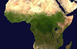 América Latina e África têm maior disponibilidade para cultivo de biomassa