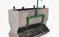 Em aço inoxidável, comedouro com maior durabilidade reduz desperdício