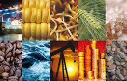 Índice de commodities tem alta de 6,2% em novembro