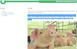Embrapa disponibiliza página exclusiva sobre bem-estar na suinocultura