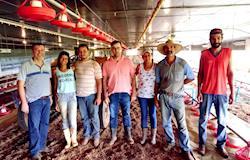 Produtor da GTFoods bate recorde em conversão e conquista R$ 1,41 por frango