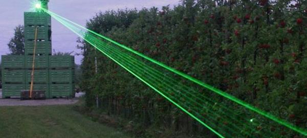 Para manter produção livre de doenças, avicultor usa laser que afasta aves selvagens