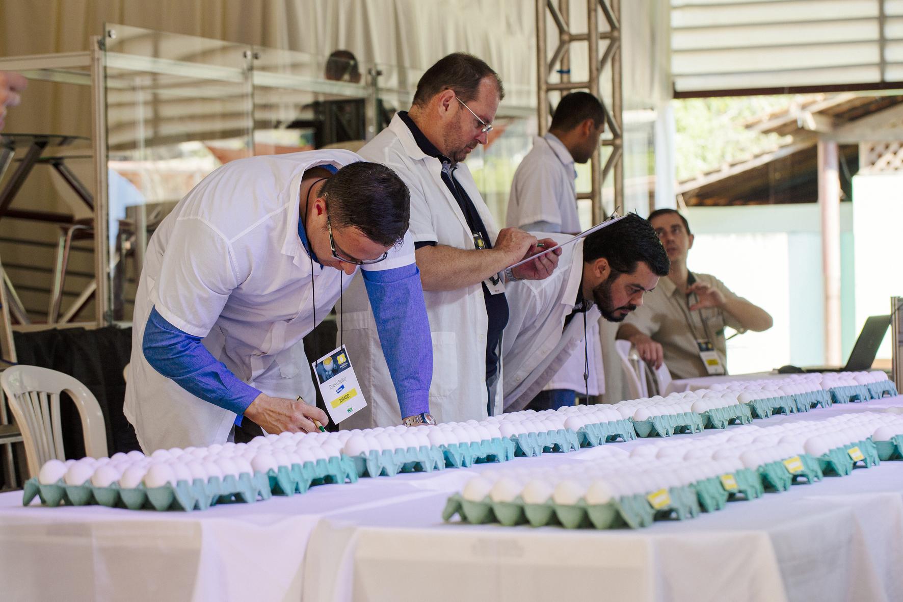AVES e Coopeavi realizam concursos de qualidade do ovo durante a programação da 4ª FAVESU